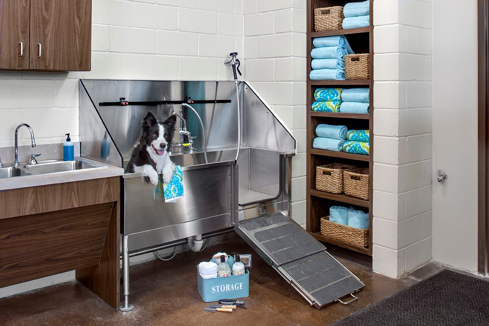 Lake Travis Animal Hospital