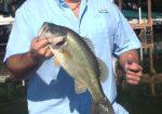 Austin Fishing Guide - Lake Travis Fishing Guide