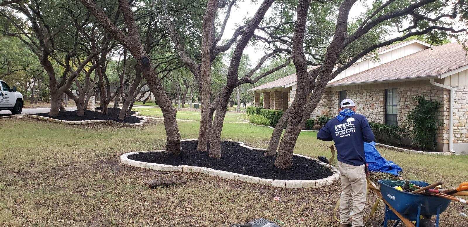 Robert's Tree Service - Lake Travis Tree Trimming & Removal