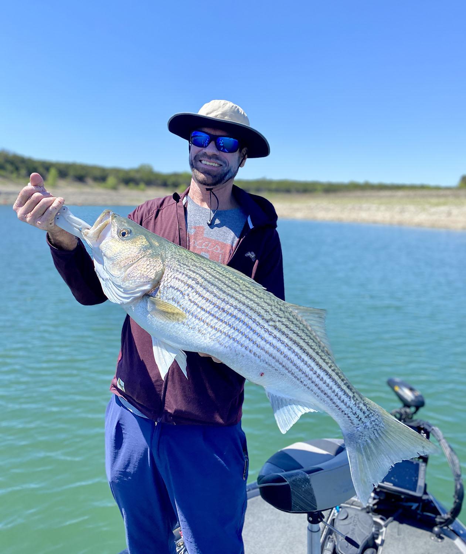 13 lb Striper caught on Lake Travis April 2021.