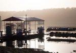 Austin Pedal Kayaks - Lake Travis Kayak Rentals
